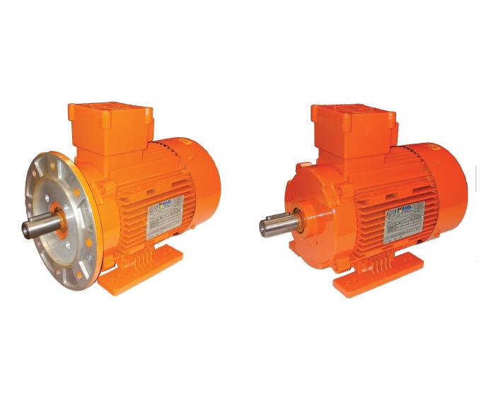 4 26, מנועי חשמל E.M.G.Y. EFF1, מנועי חשמל IP55, מנועי חשמל וממסרות, מנועי בטיחות real, מנועי בטיחות empy