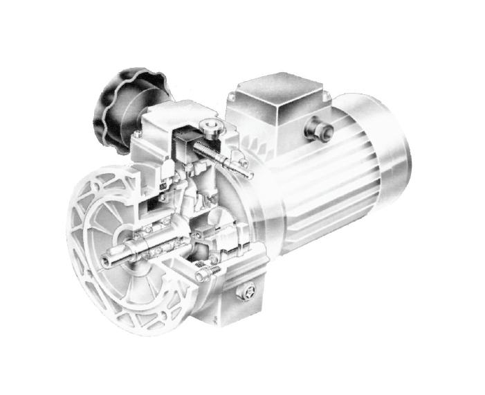 5 13, בקרי מהירות, ממסרות, מנועי חשמל ובקרי מהירות, מנועי חשמל וממסרות, משני מהירות מכניים motovario